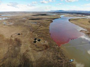 Обобщив сообщения сми опишите экологические бедствия
